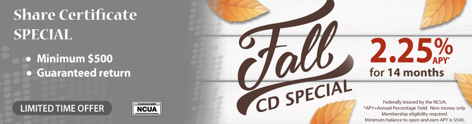 Fall CD Special